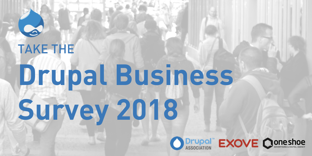 Drupal Business Survey